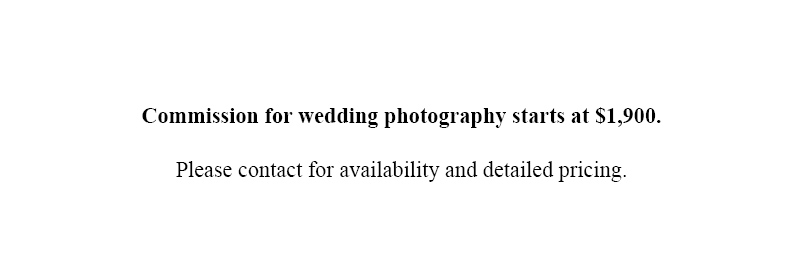 Tampa Wedding Photographer Pricing